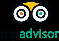 noahs-stanley-trip-advisor